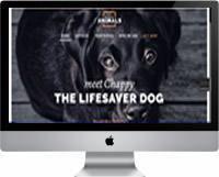 Modelos   Criação de Sites Para Abrigo de Animais 03